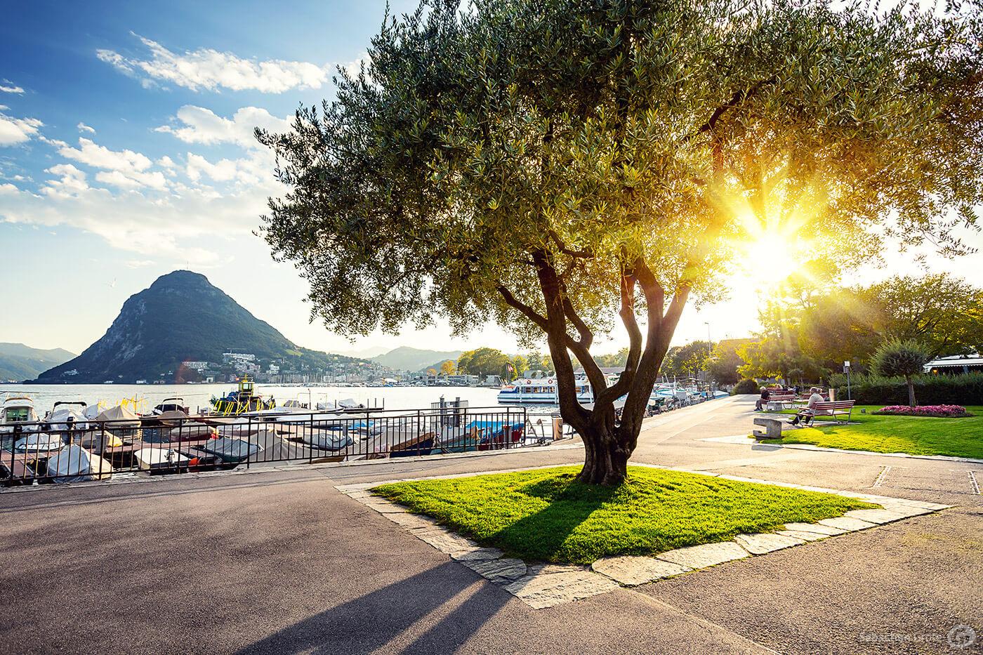 Lugano und die Tessiner Alpen 7