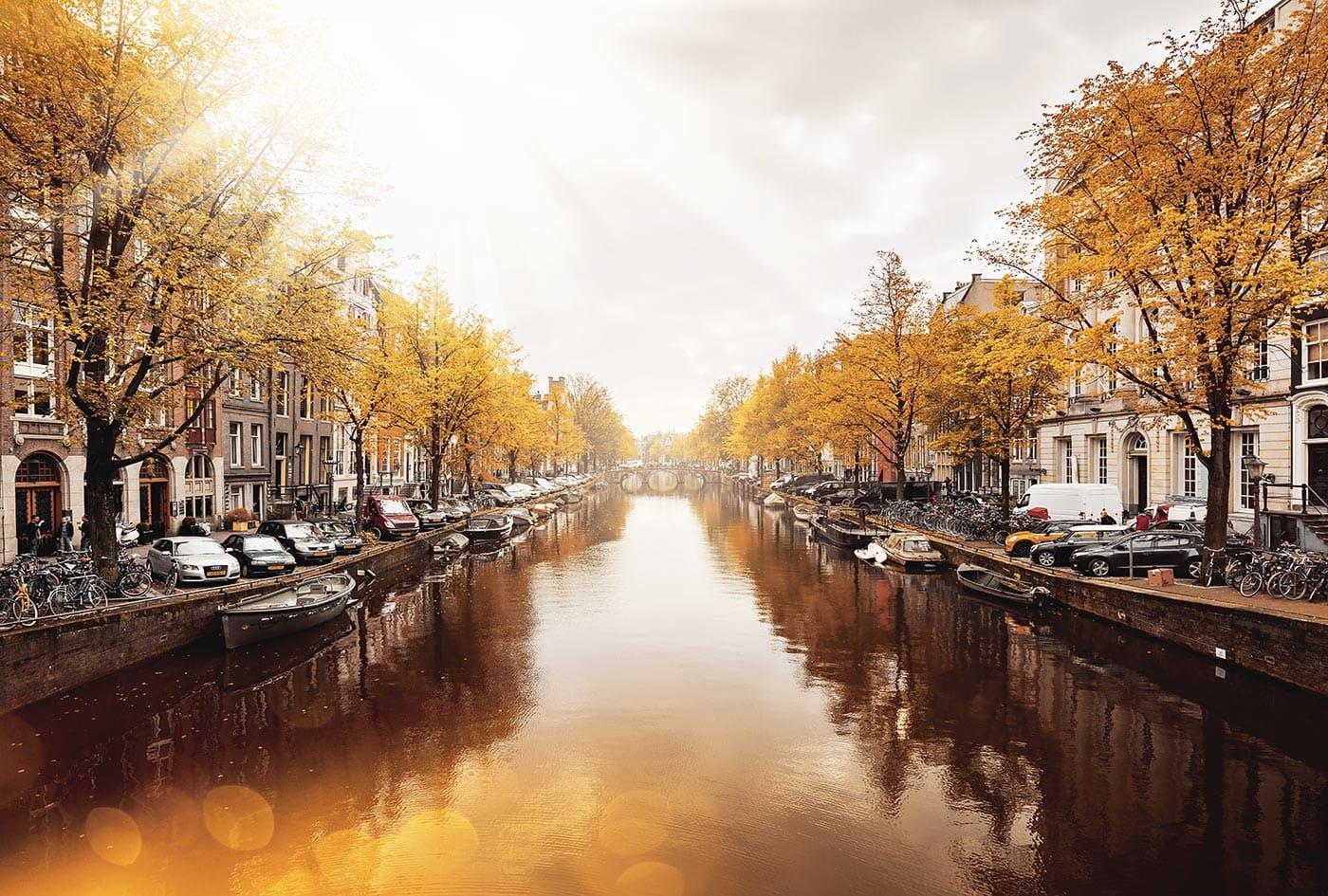 Herbstliche Färbung einer Gracht in Amsterdam