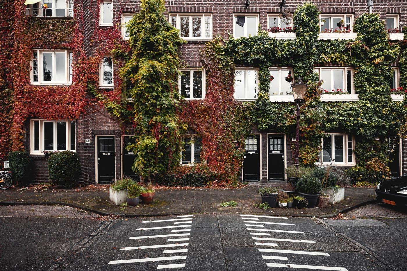 Begrünte Häuserfassade in Amsterdam