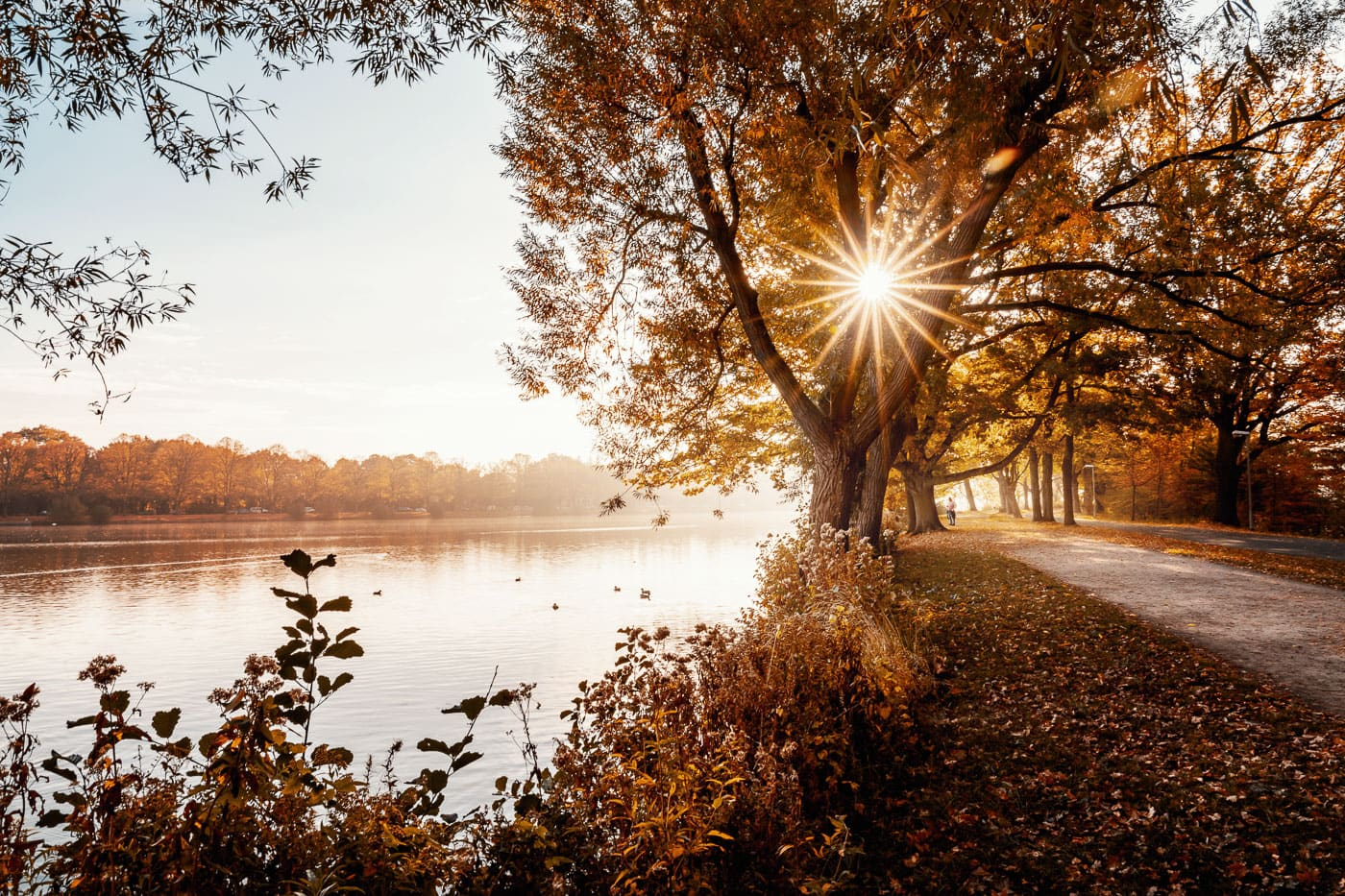 Maschsee Hannover im Herbst
