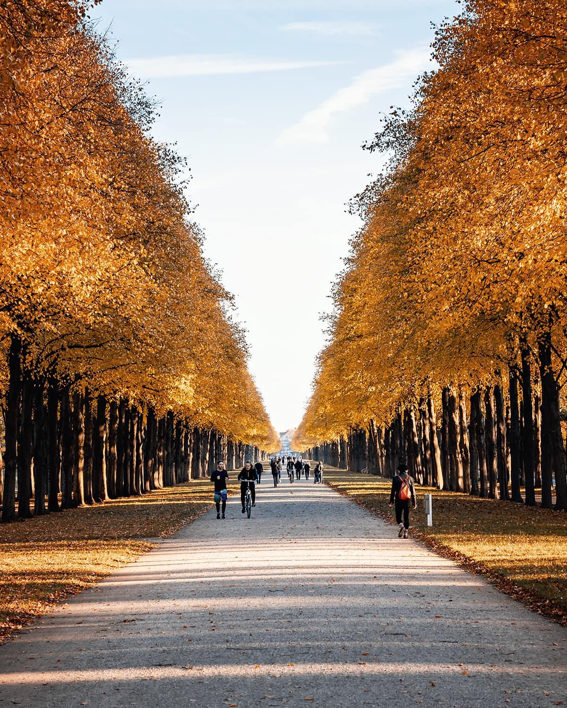 Herrenhäuser Allee im Herbst